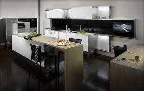 Slab Door Kitchen Cabinets by Kitchen Shaker Kitchen Cabinets Slab Cabinet Doors Modern