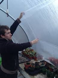 winter tips for your polytunnel u2026 winter growing tips
