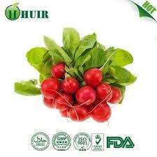 natural food coloring radish red cas no 134 04 3 buy radish red