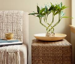 Feng Shui Home Decor by 7 Steps To Good Feng Shui In Your Home Feng Shui Apartments And