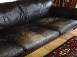 Leather Sofa And Dogs Scratch Leather Sofa Functionalities Net