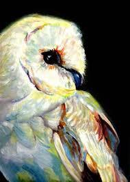 The Barn Owl Carol Stream 516 Best Dessins De Chouettes Hiboux Images On Pinterest