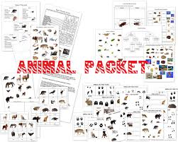 animal unit vertebrate invertebrate animals worksheet packet 40