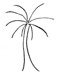 palm tree drawing samantha bell