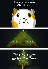 Cat Christmas Tree Meme - the reason cats attack christmas trees