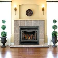 Natural Gas Fireplaces Direct Vent by Wholesale Gas Fireplaces Napoleon Direct Clean Direct Vent Gas