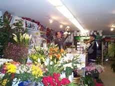 flower delivery boston boston city florist flower delivery in boston and around the world