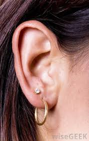 earrings on top of ear what are stud earrings with pictures