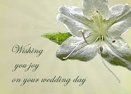 wedding wishes on card wedding wishes card white azalea greeting card for sale by