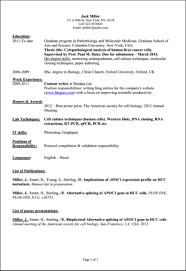 Ideas Collection Sample Internship Cover Brilliant Ideas Of Sample Resume For Internship In Computer