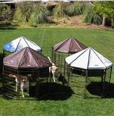 best outdoor dog kennel reviews 2017 buying guide