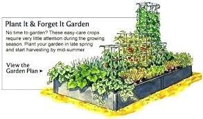 Ideal Vegetable Garden Layout Free Garden Planning Free Vegetable Garden Plans Best Vegetable