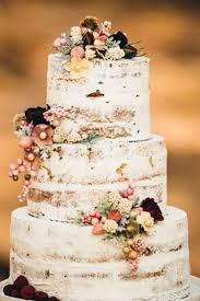32855 best cakes images on pinterest cakes biscuits and amazing