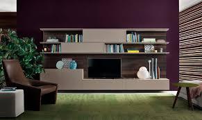 Wall Unit Bookshelves - beautiful purple green wood glass unique design contemporary tv