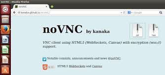 vnc console ubuntu 14 10 connect to unity interface via web vnc viewer