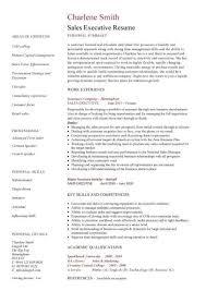 Sle Executive Resume sale executive resumes pertamini co
