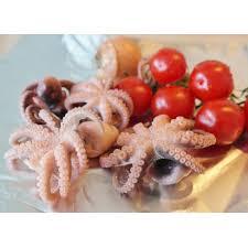 poulpe cuisine poulpe frais
