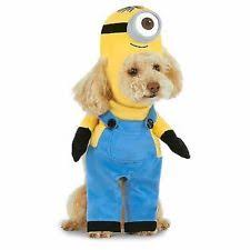 costumes for dogs costumes for dogs ebay