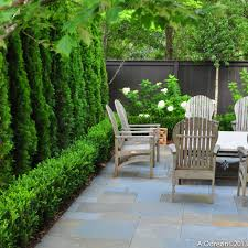 low boxwood hedges with cherry laurel or savannah holly insets