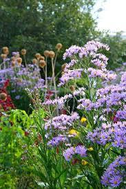 Simple Flower Garden Ideas Easy Flower Garden Image Of Easy Flower Bed Ideas Front Of House