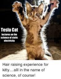 Electricity Meme - 25 best memes about static electricity static electricity memes