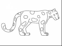 extraordinary jaguar big cat coloring page with jaguar coloring
