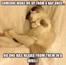 Funny Sleep Memes - funny sleep memes best collection of can t sleep pictures