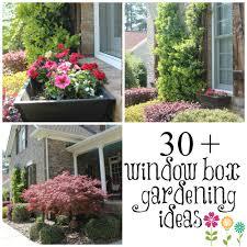 Garden Boxes Ideas Window Garden Box Ideas Home Outdoor Decoration