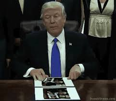 Animated Gif Meme - how to make your own donald trump executive order meme