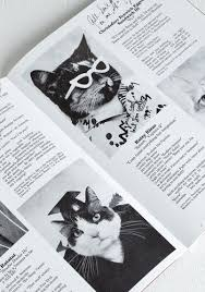 cat high the yearbook the 25 best yearbook mods ideas on yearbook layouts