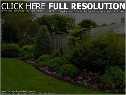 Landscaping Ideas For Backyard With Dogs Backyards Splendid Good Backyard Ideas Backyard Design Backyard