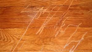 Floor Scratch Repair Scratches On Hardwood Floor Home Design