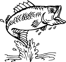 cathing bass fish colouring happy colouring