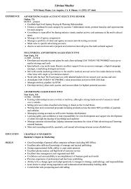 sales executive resume advertising sales executive resume sles velvet