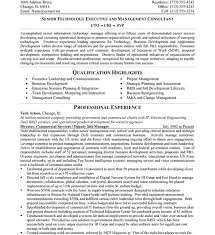 Technical Resumes Examples by Cto Resume Examples Haadyaooverbayresort Com