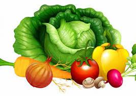 ct horticultural society presents beginning vegetable gardening