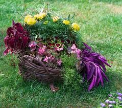 basket of flowers beautiful basket of flowers in the garden landscape stock photo