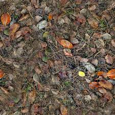 forest ground textures leaves 3 png opengameart org