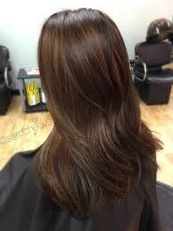 light brown hair with caramel highlights on african americans from black to caramel chocolate brown hair balayage for dark