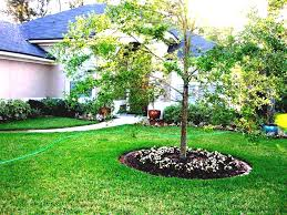 Landscaping Ideas For Large Backyards Here Are Some Creative Designs Cheap Landscaping Ideas For Large
