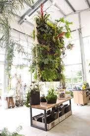 indoor plant decorating ideas cómo crear un jardín vertical con