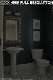 bathroom painting ideas pictures paint for bathrooms ideas bathroom decorations