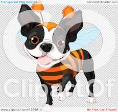 halloween clip art transparent background clipart of a cute boston terrier dog in a bug halloween costume