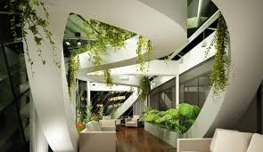 office plant hire sydney going green exotic plants that thrive in