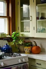 Retro Cabinets Kitchen by 90 Best Kitchen Remodel Images On Pinterest Retro Kitchens