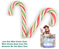 mini canes with hanging loops x 100 treasureislandsweets co uk