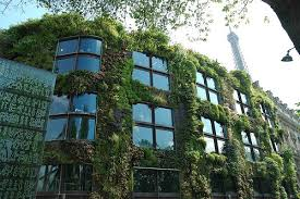How To Plant Vertical Garden - how to make a vertical garden guide tips ideas install it direct