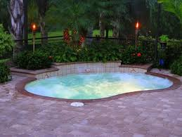 Backyard Pool Designs by Best 25 Mini Pool Ideas On Pinterest Plunge Pool Natural