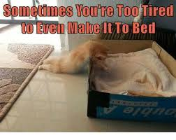 Too Tired Meme - sometimes toure too tired even male bed eitto meme on sizzle