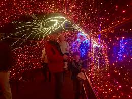 Botanical Gardens Atlanta Christmas Lights by 11 Atlanta Holiday Traditions 52 Forsyth